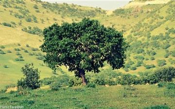Kurdistan Nature Mac wallpaper