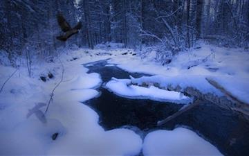 Freezing Stream Mac wallpaper