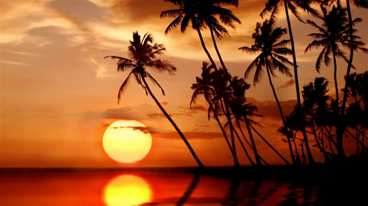 Sunset In Tropical Paradise Mac Wallpaper