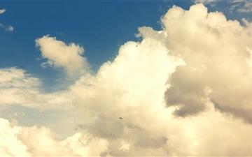 Sky And Bird Mac wallpaper