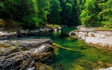 Mountainn Forest Stream Mac wallpaper