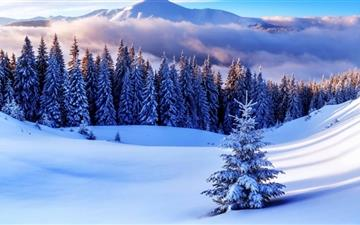 Winter Season Mountains Mac wallpaper