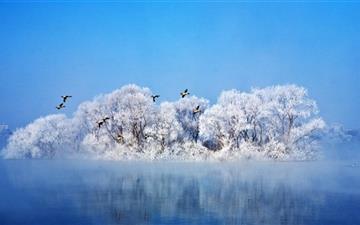 Most Beautiful Winter Mac wallpaper