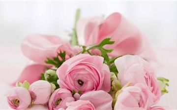 Pink Flowers Bridal Bouquet Mac wallpaper