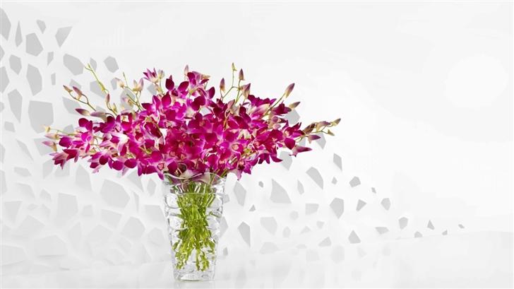 Purple orchids Mac Wallpaper