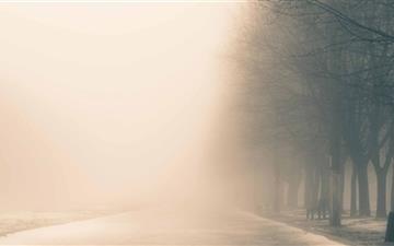 Winter Fog Mac wallpaper