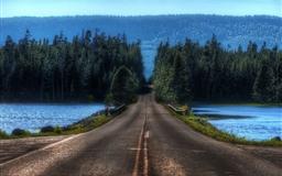 Road in Yellowstone Montana