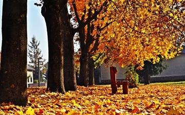 Autumn Time Mac wallpaper