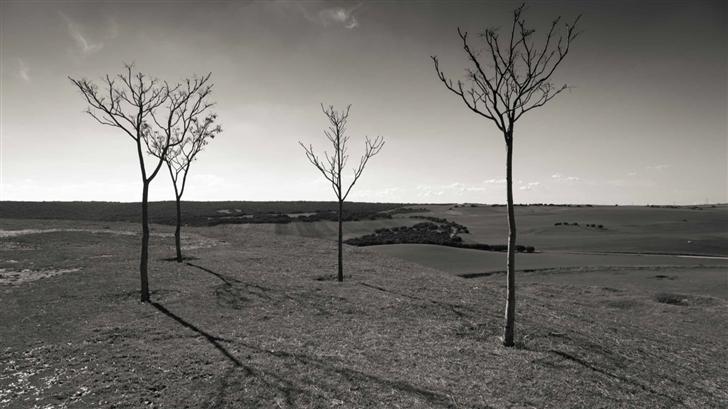 Landscape Black And White Mac Wallpaper
