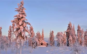 Wooden House In Winter Forest Mac wallpaper