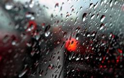Fresh Rain DropsFresh Rain Drops