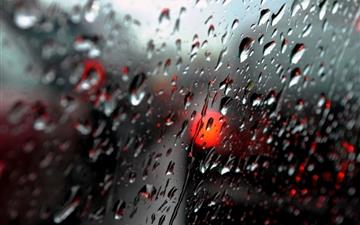 Fresh Rain DropsFresh Rain Drops Mac wallpaper