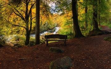 Bench Forest Autumn Mac wallpaper