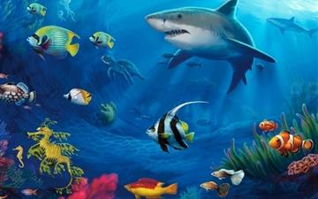 Underwater Life All Mac wallpaper
