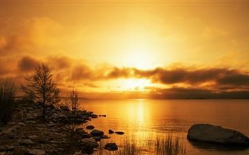 Golden Morning Mac wallpaper