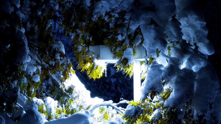 The Winterlight Mac Wallpaper