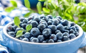 Blueberries Leaves Mac wallpaper