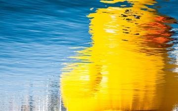 Rubber Duck Reflection Mac wallpaper