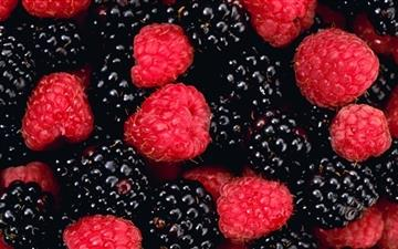 The Berries Mac wallpaper