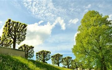 Spring Landscape Nature Mac wallpaper