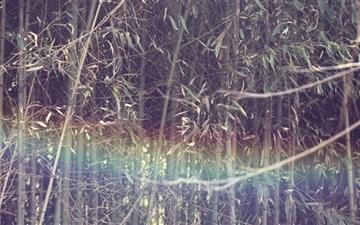 Mystic Rainbow Mac wallpaper