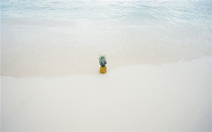Pineapple in the beach sand Mac Wallpaper