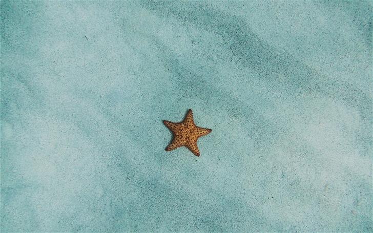 lone star Mac Wallpaper