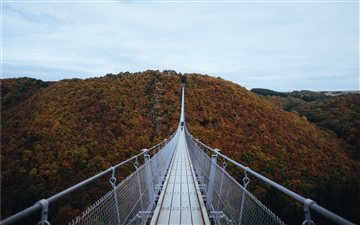 Geierlay suspension bridg... Mac wallpaper