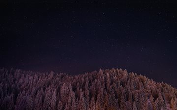 Wooded hill under stars iMac wallpaper