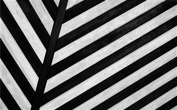 Zebra texture background Mac wallpaper