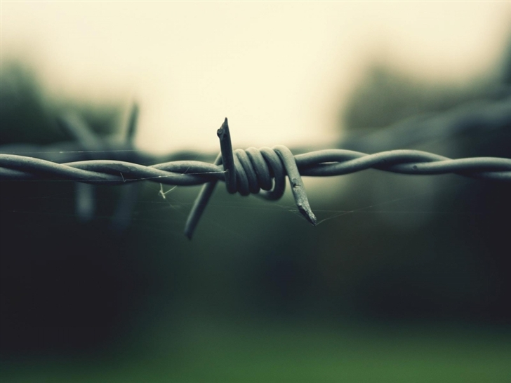 Barbed Wire Mac Wallpaper