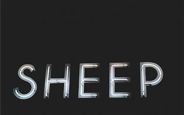 White Neon Sign Sheep Mac wallpaper