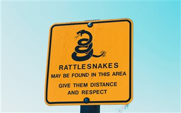 Rattlesnakes Mac wallpaper