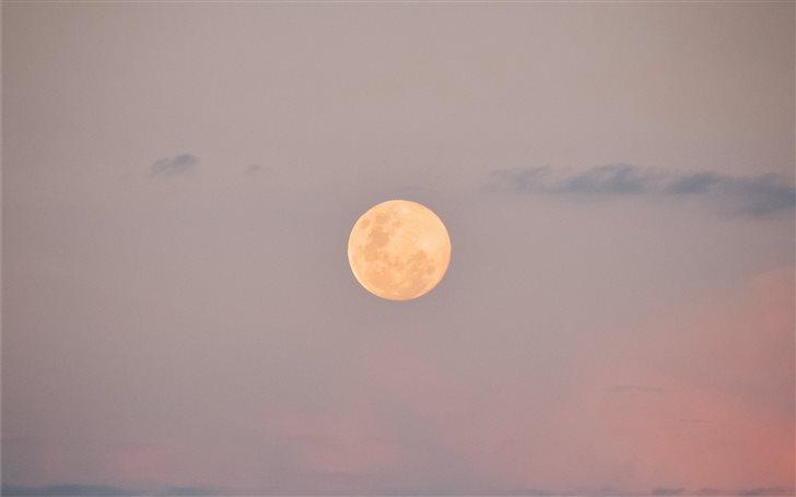 Witness of this full moon Mac Wallpaper