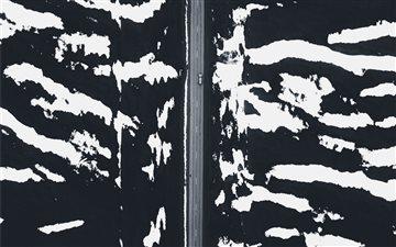 Zebra Mac wallpaper