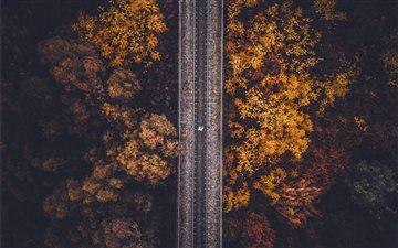 Autumn birdseye. Mac wallpaper