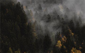 The autumn Mac wallpaper