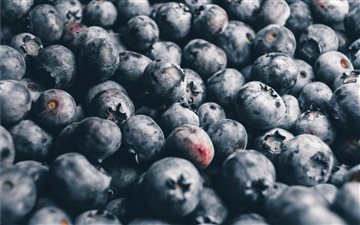 blackberries bundle Mac wallpaper
