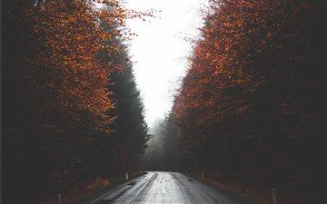 Autumn street in Austria Mac wallpaper