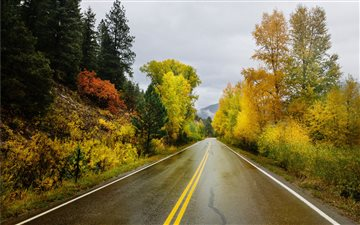 Two Lanes Through Natures... Mac wallpaper