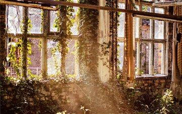 Overgrown room with windo... Mac wallpaper