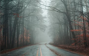 black concrete road betwe... Mac wallpaper
