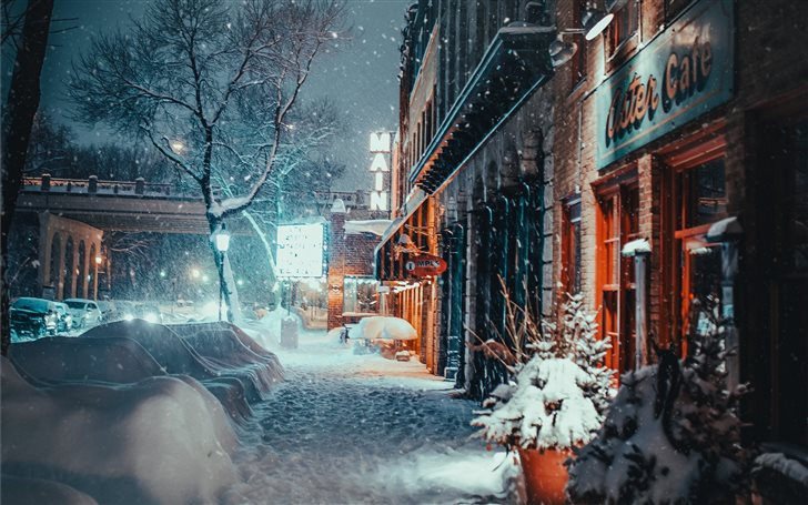 snow covered plant and ro... Mac Wallpaper