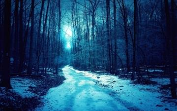 Winter Trees Roads All Mac wallpaper