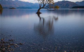 That Wanaka Tree reflecte... Mac wallpaper