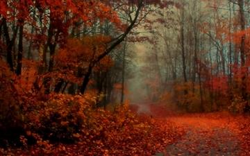 Romantic Autumn Mac wallpaper