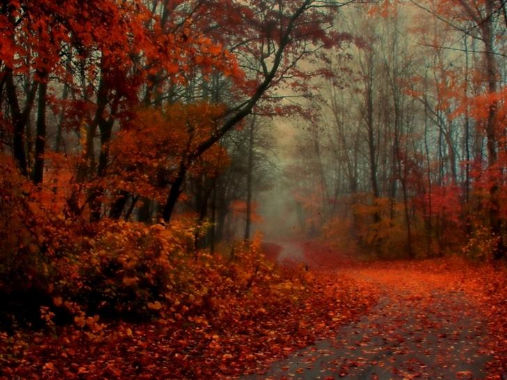 Romantic Autumn Mac Wallpaper