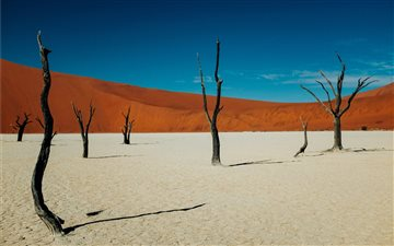 Deadvlei, Sossusvlei, Nam... All Mac wallpaper