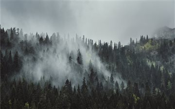 Misty morning on Durmitor... All Mac wallpaper