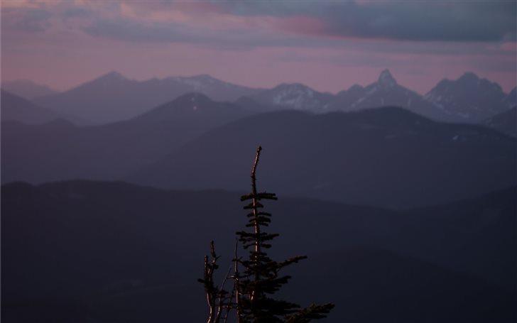 Mount Rainier National Pa... Mac Wallpaper
